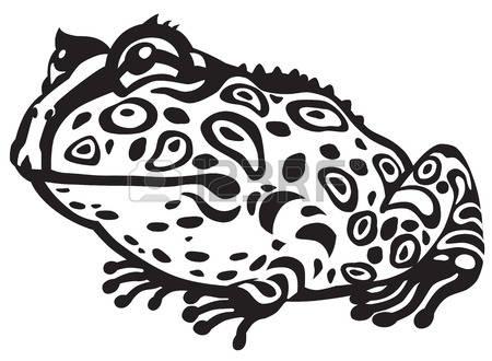 450x330 Horned Frog Clip Art Clipart
