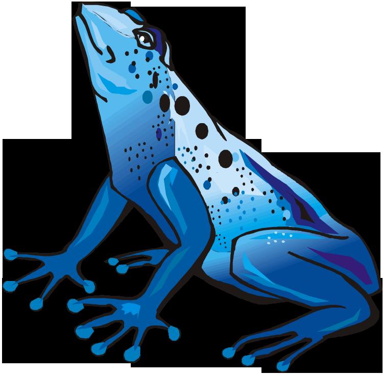750x734 Frog Clip Art