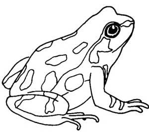 300x265 Cute Frog Clip Art Black And White Clipart Panda