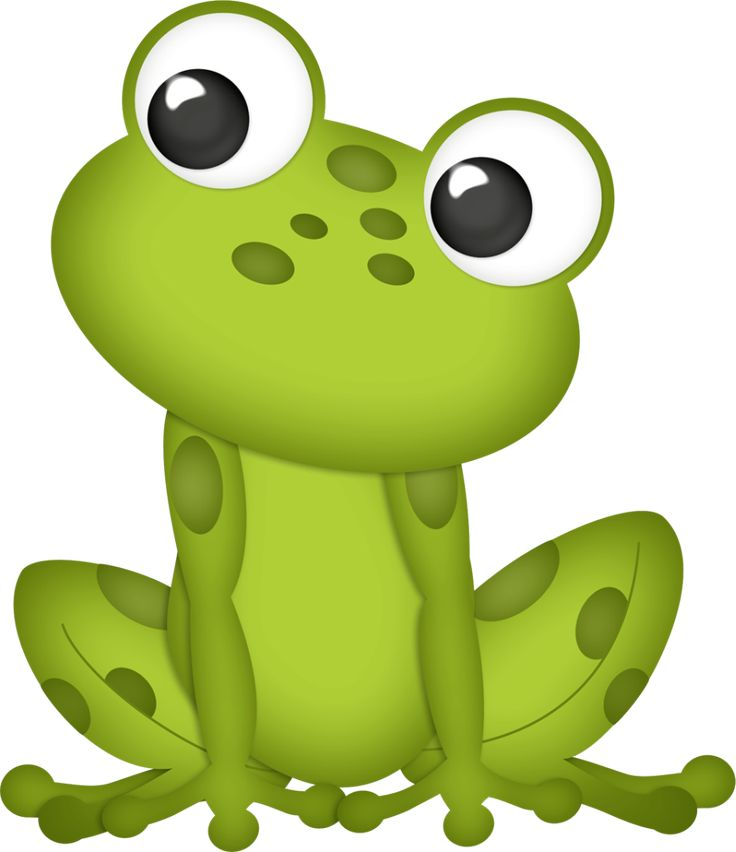 736x852 157 Best Frog Clip Art Images Pictures, Anniversary