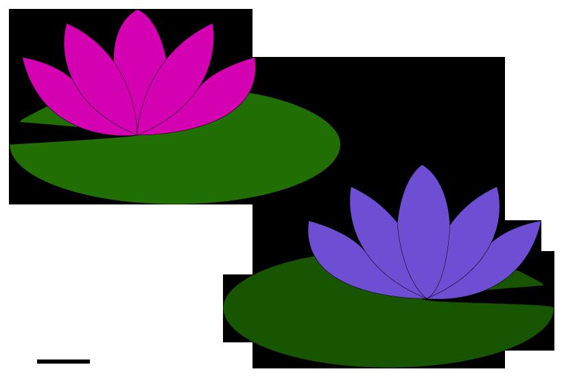 822x567 Pond Flower Clipart, Explore Pictures