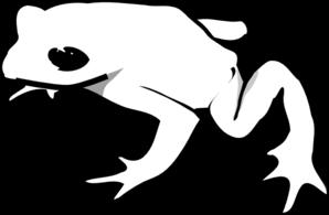 298x195 Frog Outline Animal Clip Art