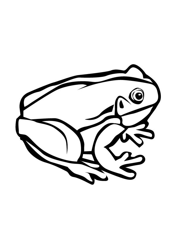 612x792 42 Best Frog Tattoo Coloring Pages Images Colouring