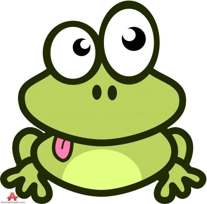 728x716 Adult ~ Funny Frog Cartoon Royalty Stock Photography Image Pics