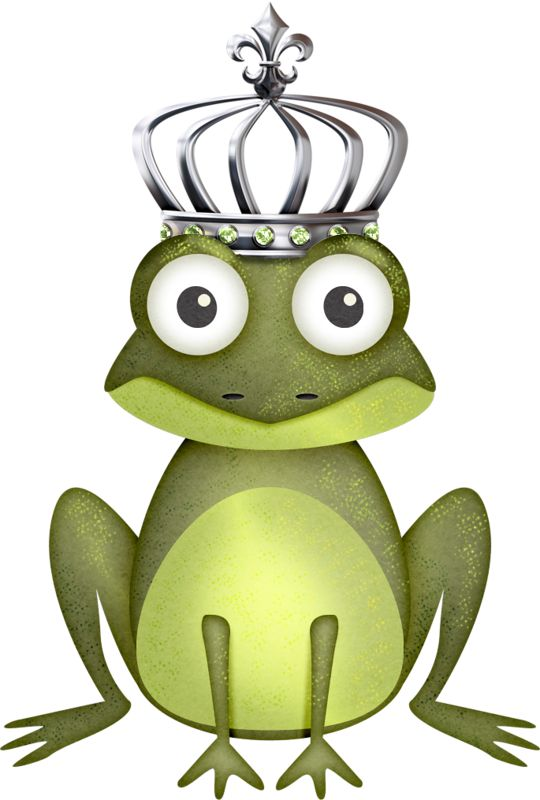 540x800 190 Best Frogs Images Frogs, Clip Art And Cute Frogs