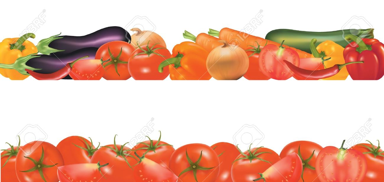 1300x616 Best Vegetable Border