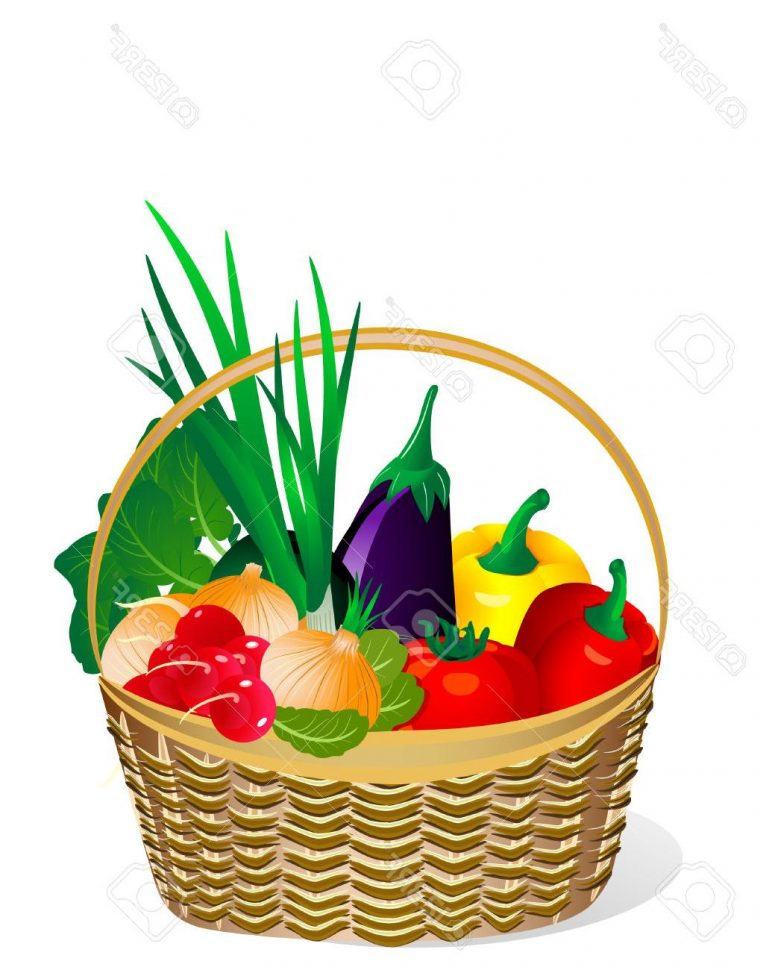 775x970 Top Vegetable Basket Vector Images Vector Images Stocks, Drawing