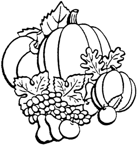 567x600 Fall Leaves Black And White Clipart