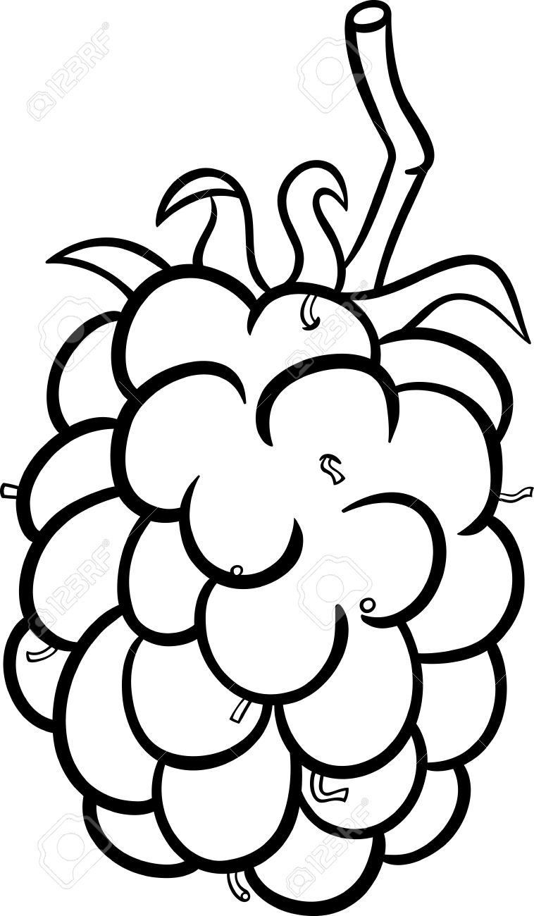 758x1300 Black And White Cartoon Illustration Of Blackberry Berry Fruit