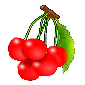 300x300 Fresh Fruits Clip Art Download