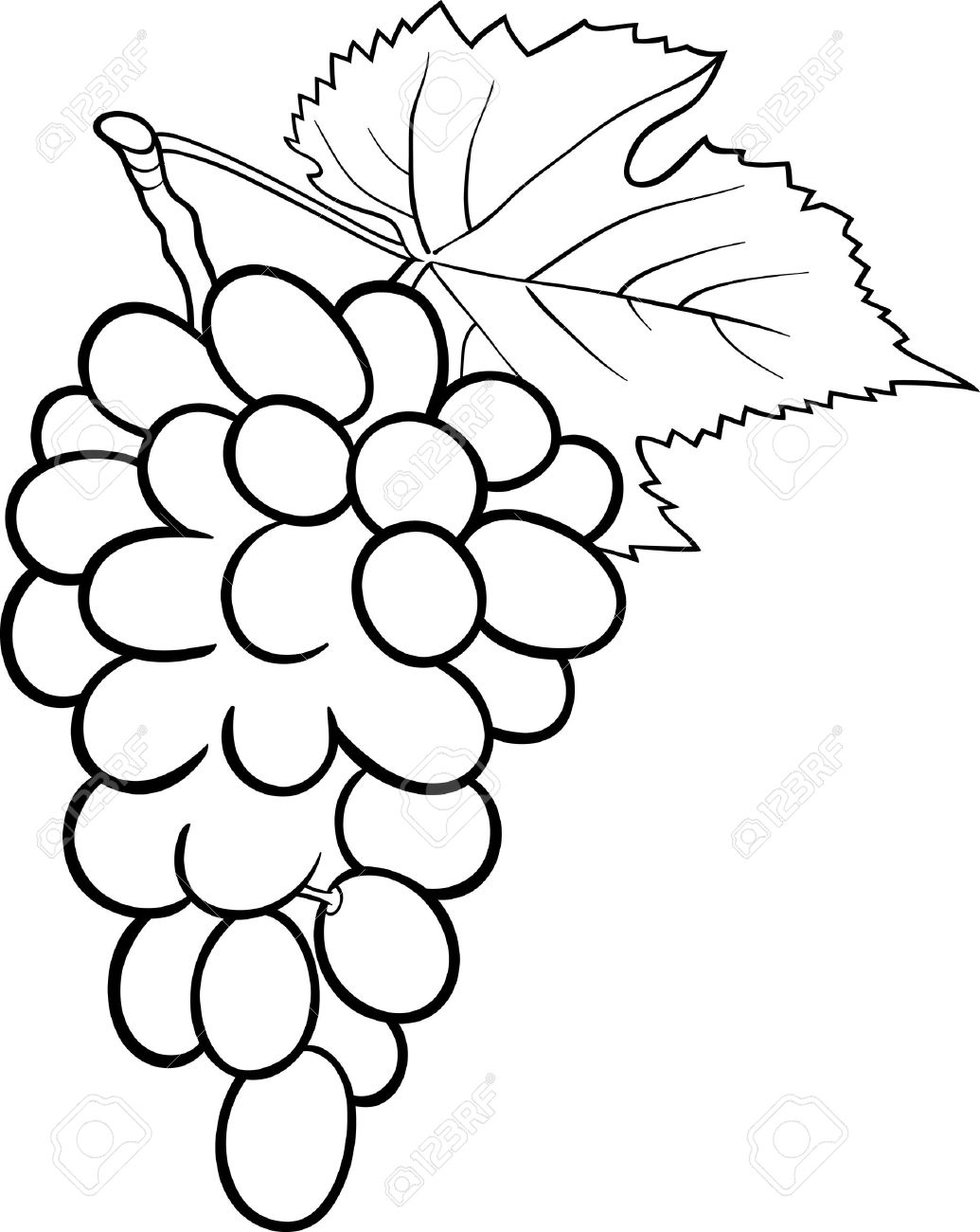 1035x1300 Grapes Clipart Black And White