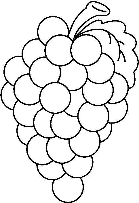 483x708 Grapes Clipart Free Clip Art Image