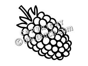 300x225 Whiteberry Fruit Clipart, Explore Pictures