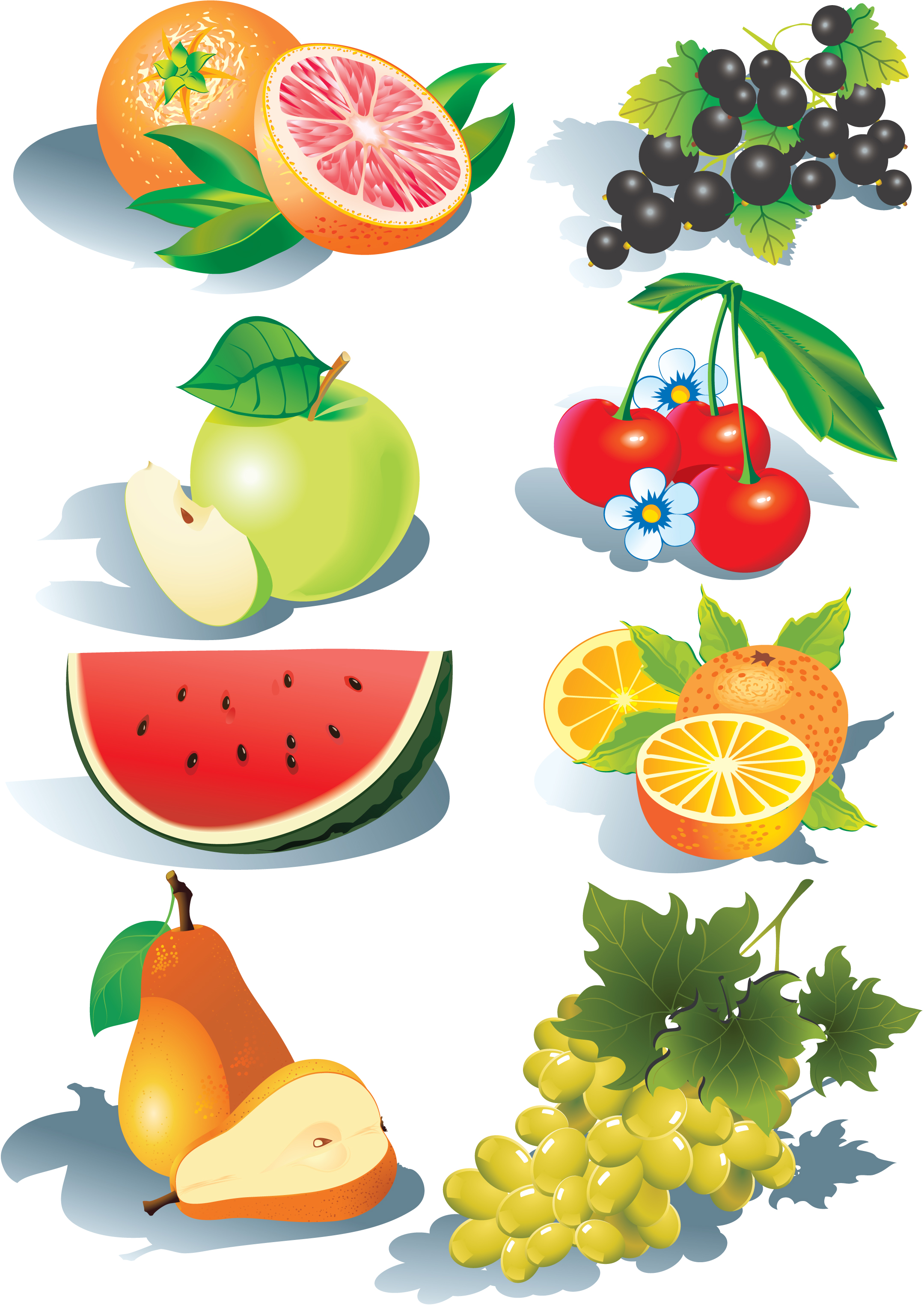 2159x3050 Fruits Vector Free Vector 4vector