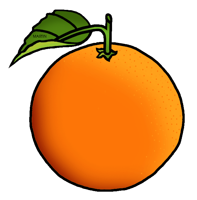 Fruit orange. Clipart free download best