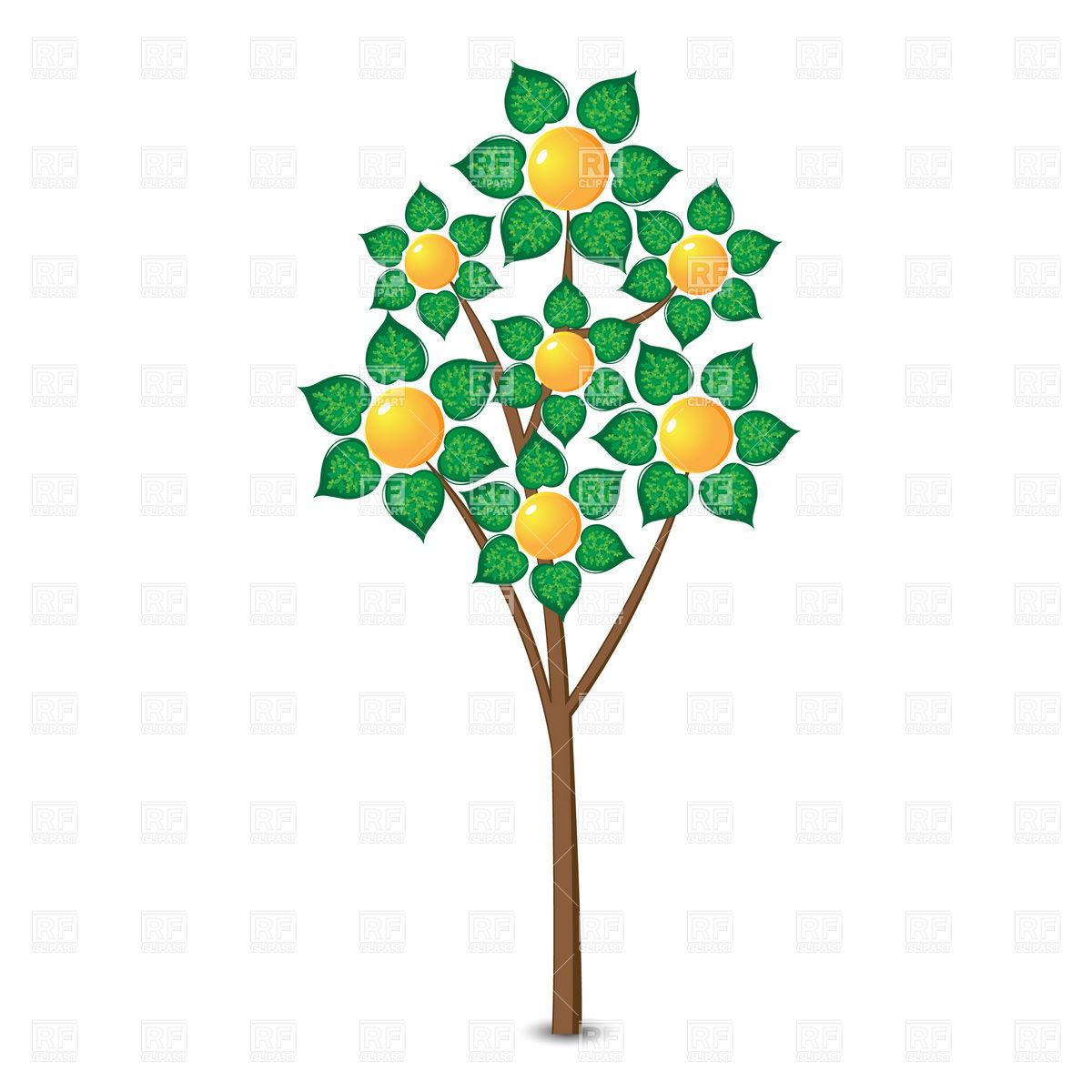 1200x1200 Citrus Clipart Citrus Tree