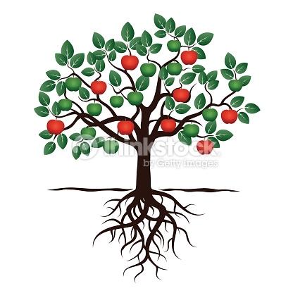 416x416 Drawn Roots Fruit Tree