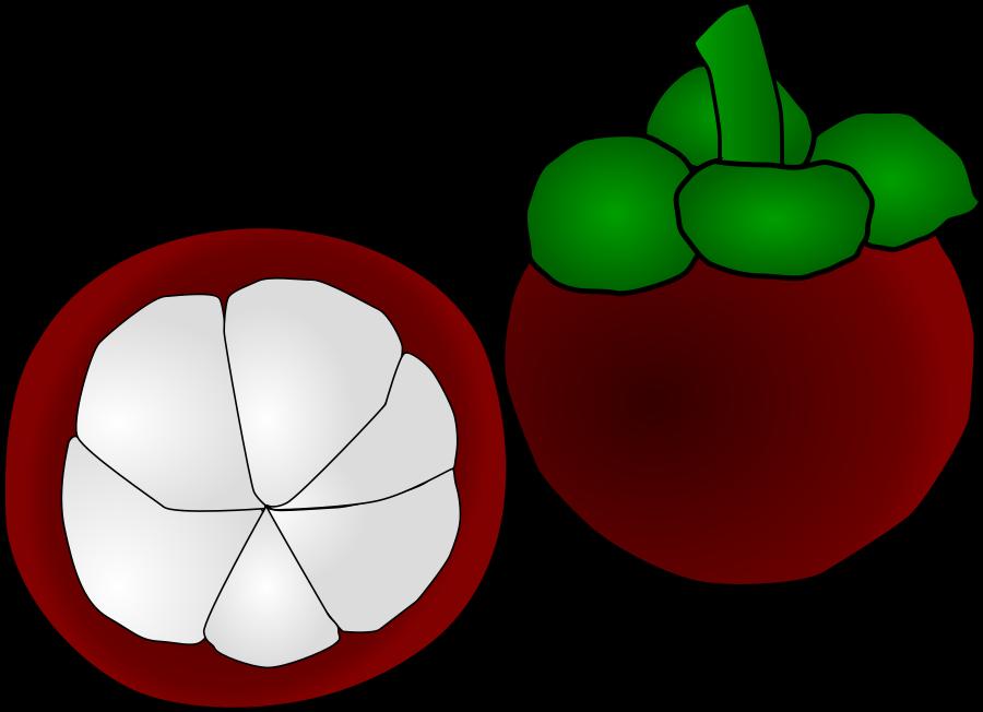 900x652 Fruit Tree Clip Art Image
