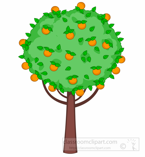 509x550 Fruit Tree Clipart Free Images 2