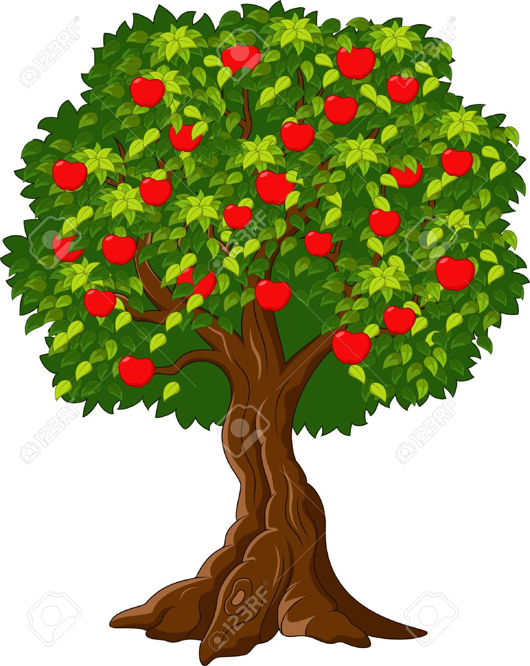 1035x1300 101,971 Fruit Tree Cliparts, Stock Vector And Royalty Free Fruit