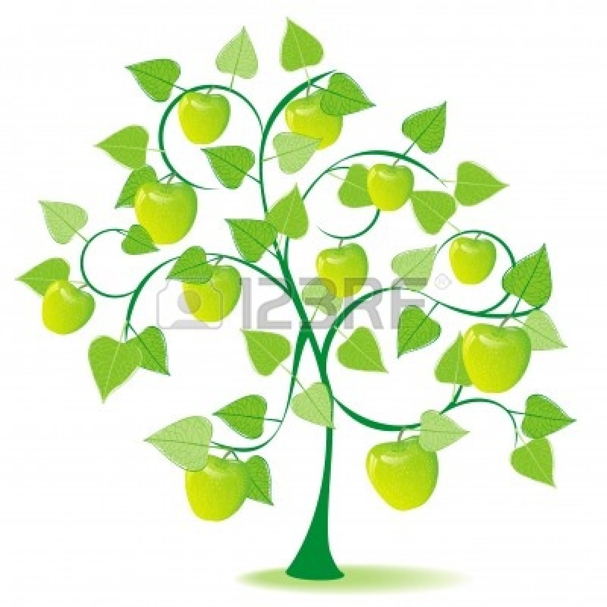 1200x1200 Apple Fruit Tree Clip Art Cliparts