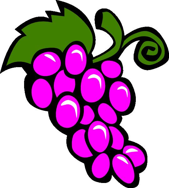 540x599 Free Clipart Boarders Fruit