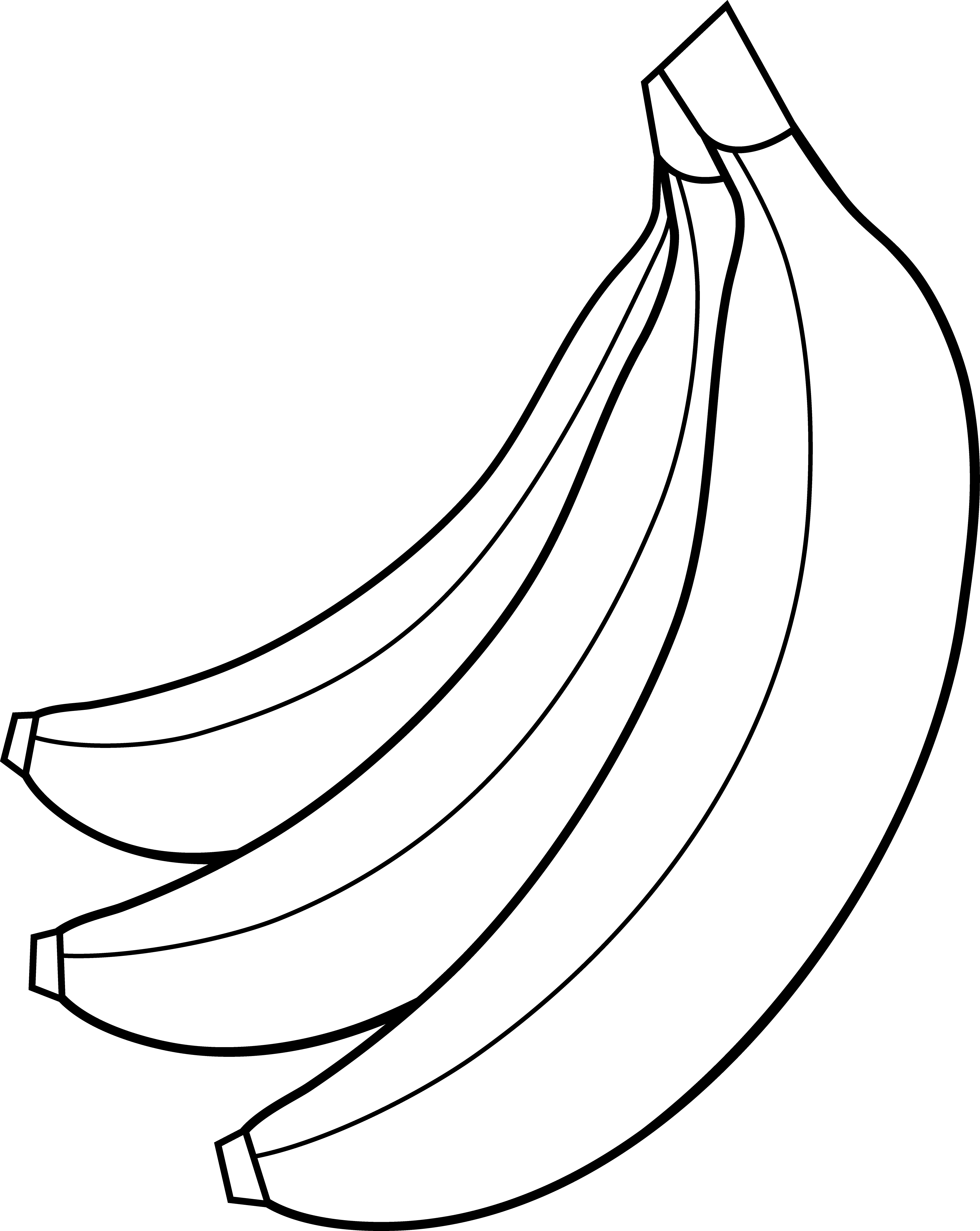 3631x4559 Colorable Bunch Of Bananas