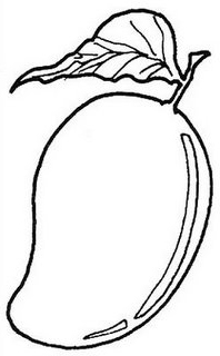 198x320 Mango Coloring Pages Embroidery Kindergarten