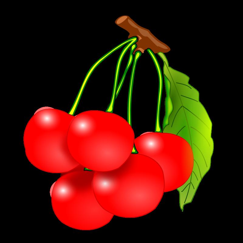 800x800 Fruits Clip Art Download Image
