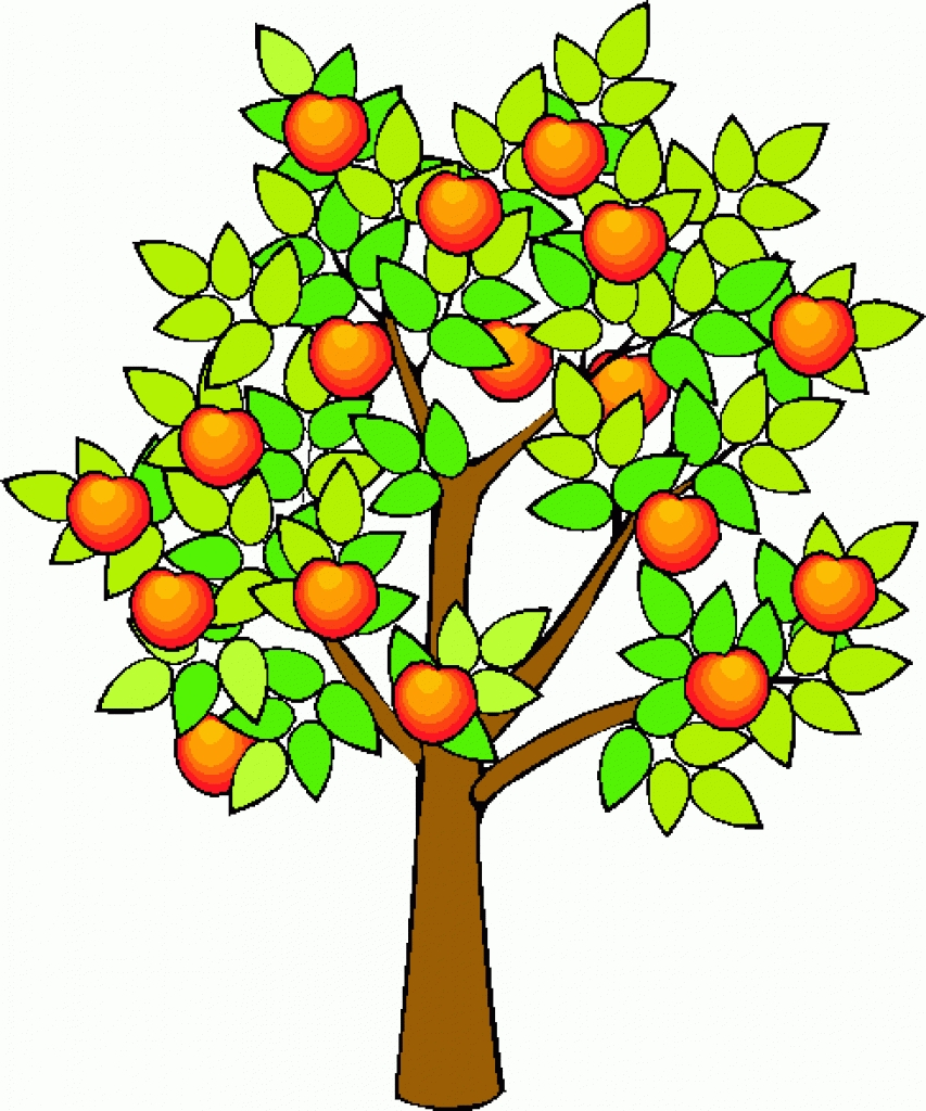 853x1024 Tree Fruit Clipart