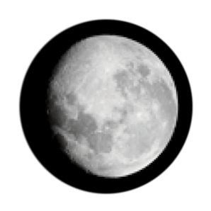 298x298 The Black Cat On The Moon