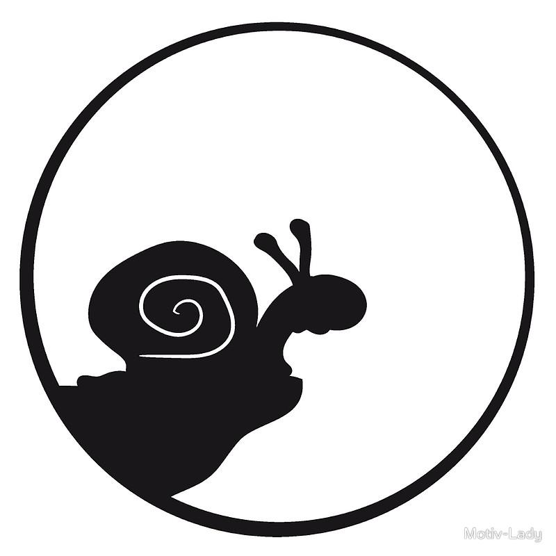 800x800 Moon Snail Clipart