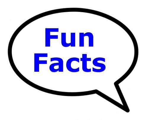 500x405 Fun And Interesting Facts Clip Art Clipart Free Download On Fun