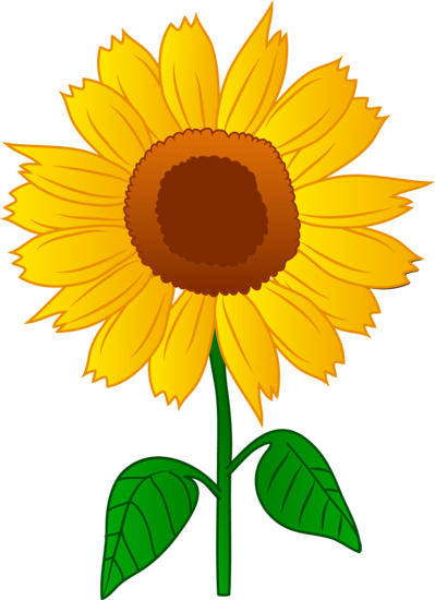 399x550 Pretty Golden Sunflower Flowers Amp Plants