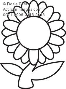 224x300 Clip Art Illustration Of A Daisy Flower