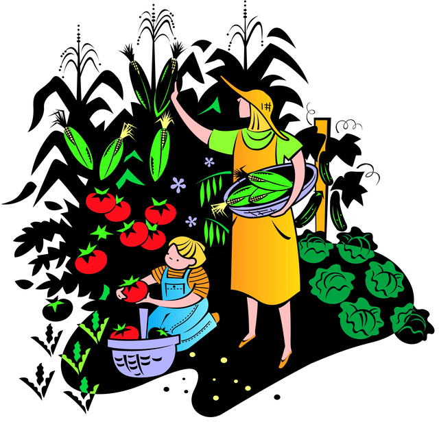 640x619 Vegetable Garden Clipart Free Images 4