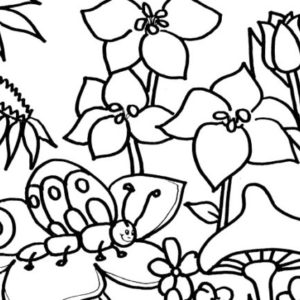 300x300 Lovable Simple Garden Coloring Pages
