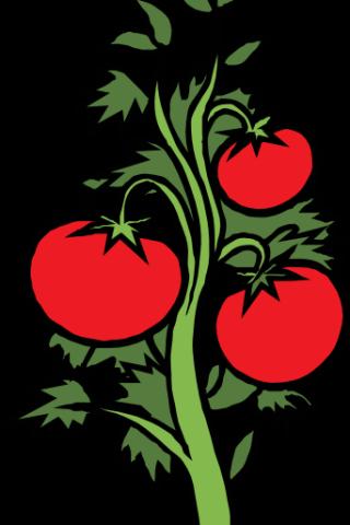 320x480 Vegetable Garden Clip Art