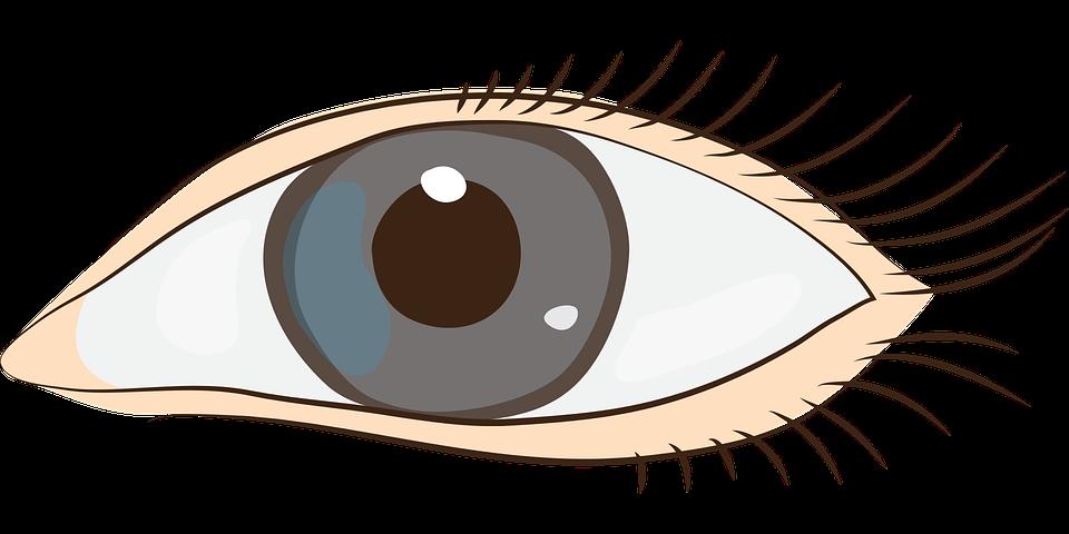 960x480 Gentle Eyes Clip Art Cliparts