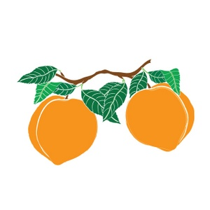 300x300 Peach Clipart Georgia Peach