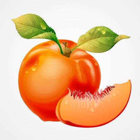 456x456 Peach Clip Art Vector Peach Graphics Clipart Me Image