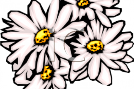 450x300 Daisy Clip Art Related Keywords Amp Suggestions White Daisy Clip Art