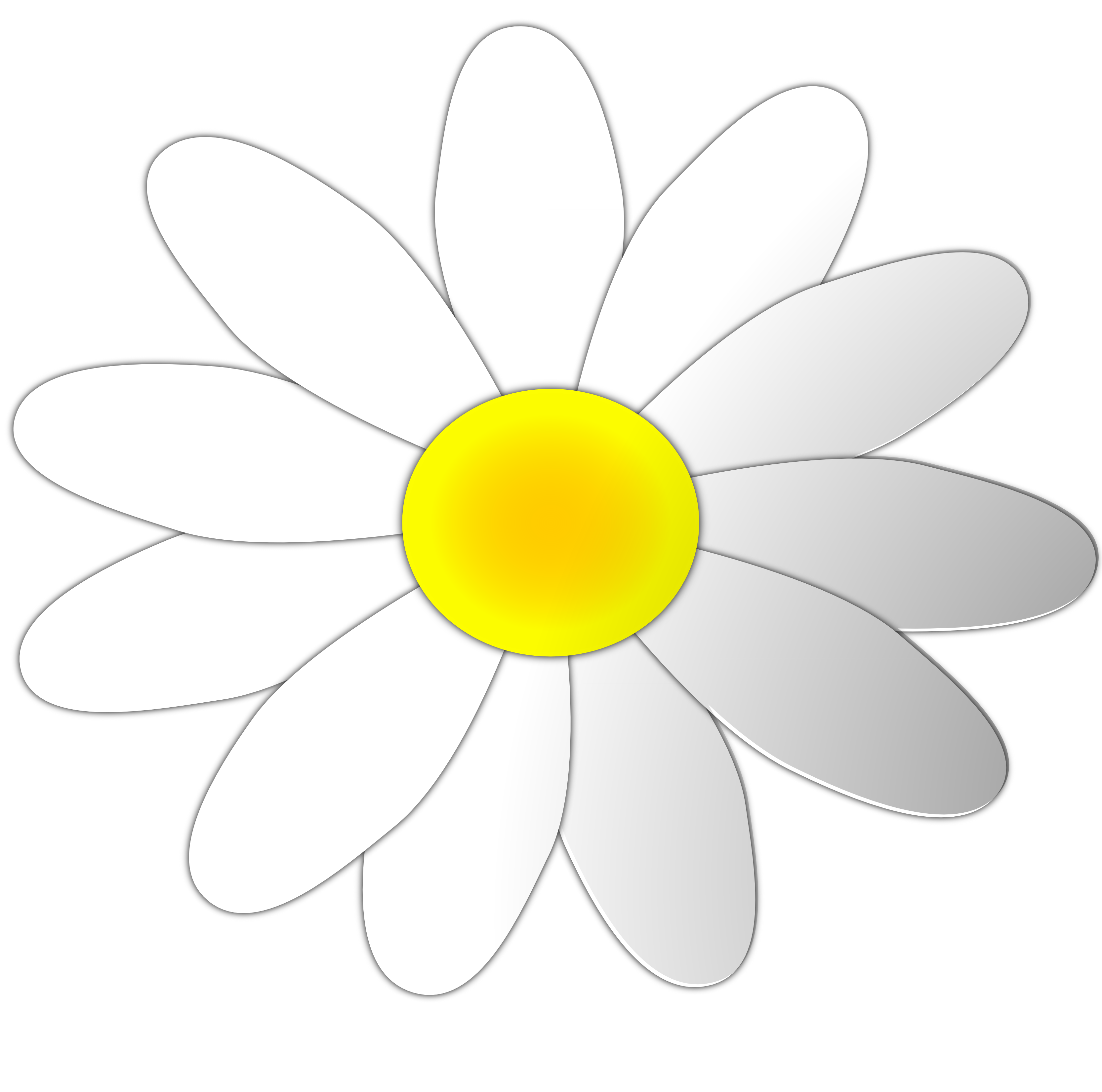 3333x3304 Daisy Flower Clip Art Clipart Clipartix