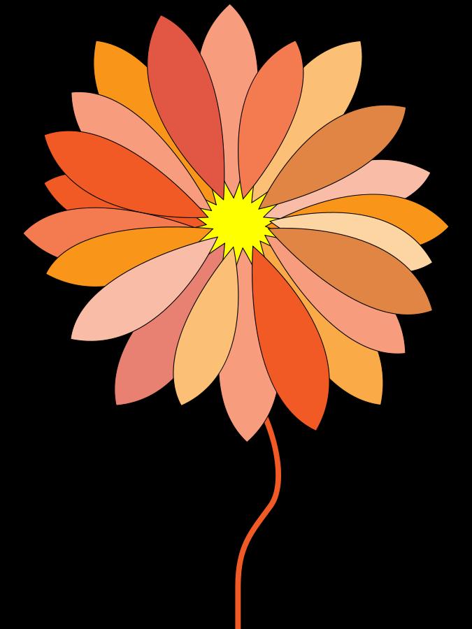 675x900 Free Clipart Sideways Daisy
