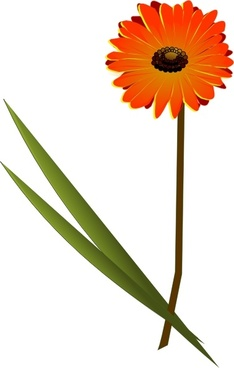 234x368 Gerbera Free Vector Download (19 Free Vector) For Commercial Use