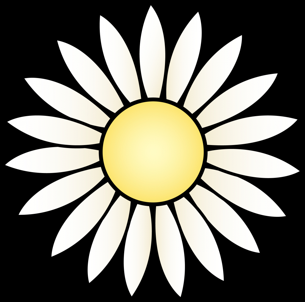 1024x1014 Simple Daisy Drawing Simple Gerbera Daisy Drawing Google Search