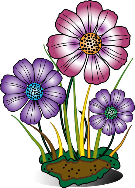 444x618 Bloom Daisy Clipart, Explore Pictures