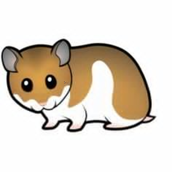 600x600 Animated Gerbil Clipart Free Images