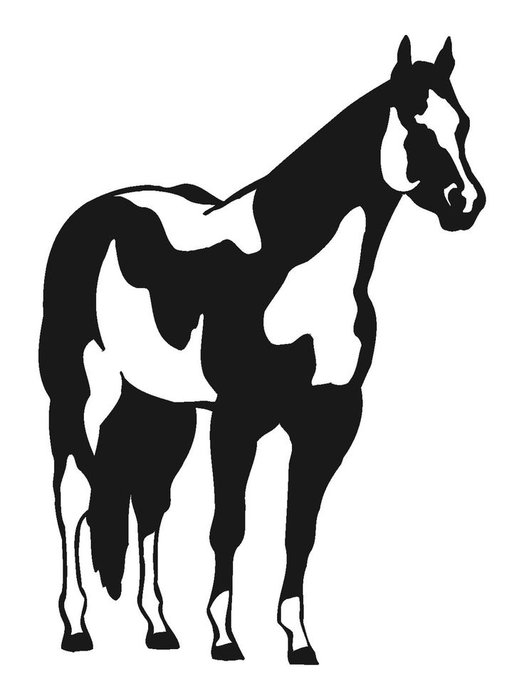 Ghost Horse Cliparts