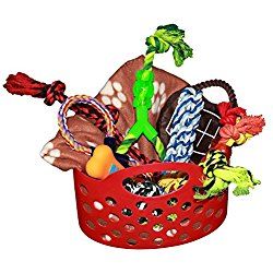 250x250 Great Gifts For Dog Lovers Dog Gift Baskets